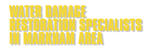 Water Damage Restoration Specialists In Markham Area
